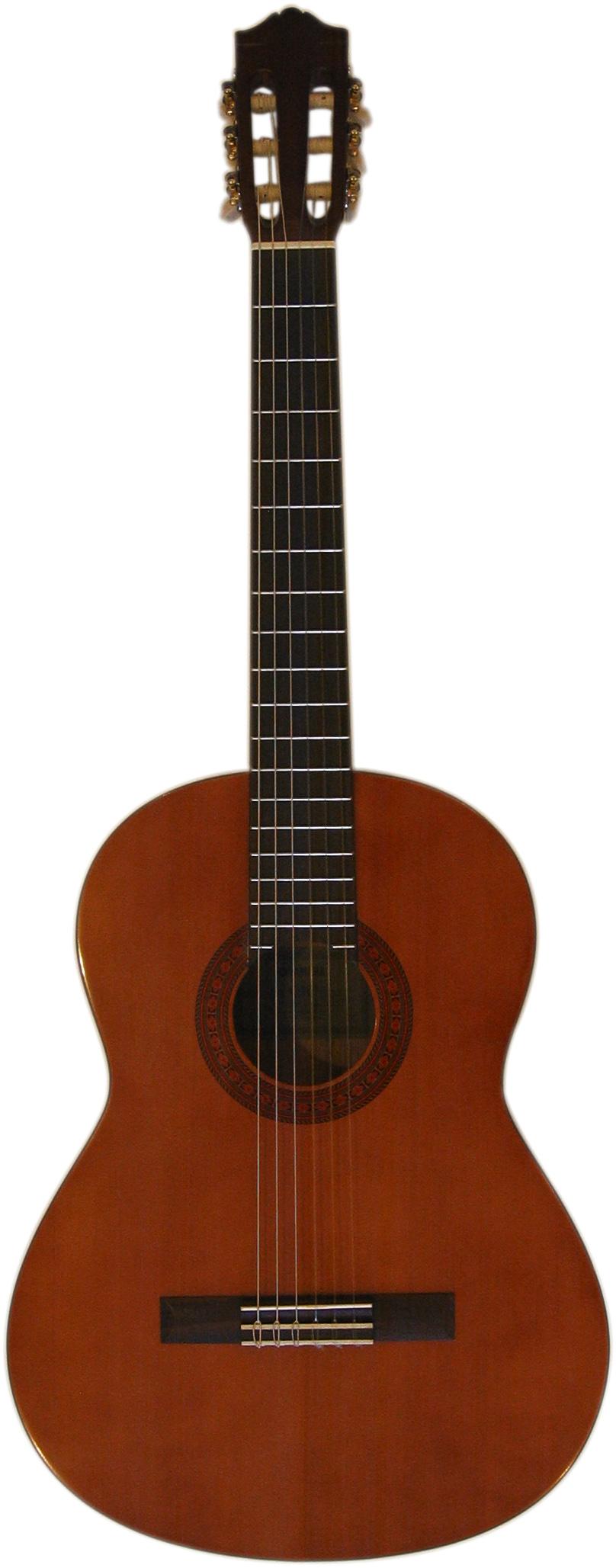 guitare classique prince